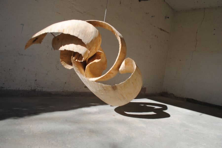 Künstler-Bildhauer-Peter-Rappl-Movement